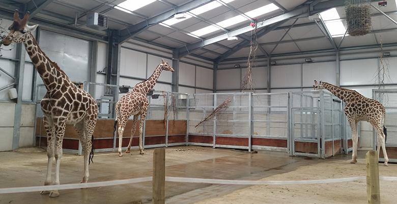 Biology visit Twycross Zoo