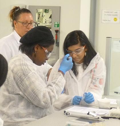 Molecular Biology Masterclass